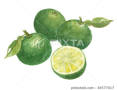 citron, japanese citron, yuzu (small citrus fruit) 80577817