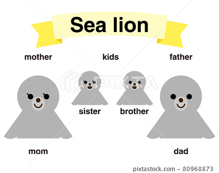 Parent and child of sea lion 80968873
