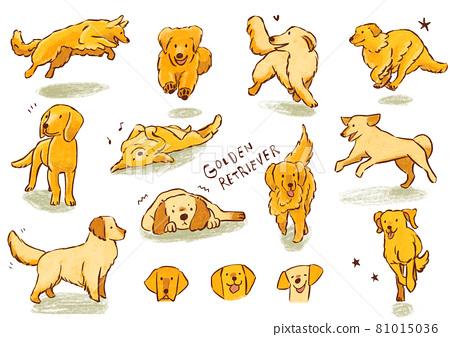 animal, animals, dog 81015036