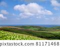 藍天蔓延的大豆山,夏天的北海道 81171468