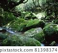 시라 타니 운수 계곡 81398374