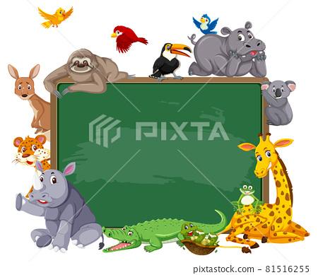 Empty blackboard with various wild animals 81516255