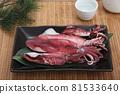 Squid 81533640