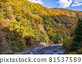 oigawa railway, autumn, autumnal 81537589