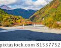 autumn, autumnal, maple 81537752