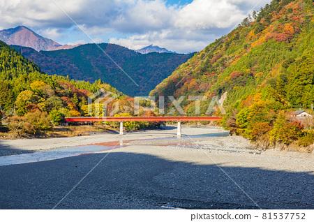 From the train window in Japan, Oigawa Railway Ikawa Line in autumn colors 81537752