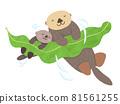 Parent-child sea otter sleeping on kelp 81561255