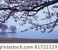 lake biwa, nagahama, lake 81722129