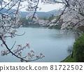 kyoto, cherry blossom, cherry tree 81722502
