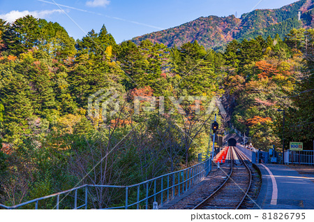 From the train window in Japan, Okuoikojo Station on the Oigawa Railway Ikawa Line in autumn colors 81826795