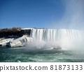 Niagara Falls 81873133