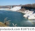 Niagara Falls and Rainbow 81873135