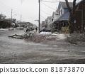 캐나다 아이스 스톰의 피해 81873870