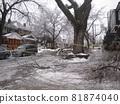 캐나다 아이스 스톰의 피해 81874040