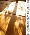 Autumn sunshine on tatami mats 81903338