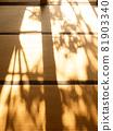 Autumn sunshine on tatami mats 81903340