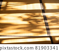 Autumn sunshine on tatami mats 81903341