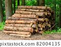 Cut down cedar wood image 82004135