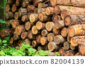 Cut down cedar wood image 82004139