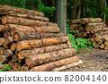 Cut down cedar wood image 82004140