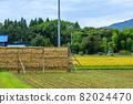 Hasakake rice harvesting, natural drying, Akita prefecture agriculture 82024470