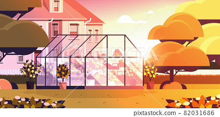 backyard planting greenhouse glass orangery botanical garden with flowers and potted plants 82031686