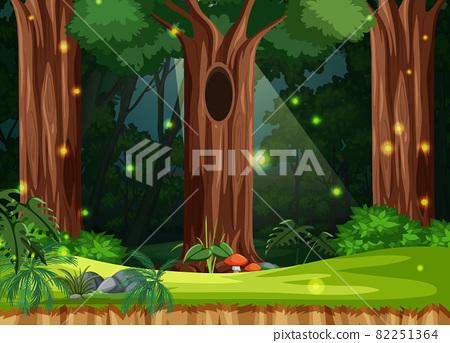 Enchanted forest landscape background 82251364
