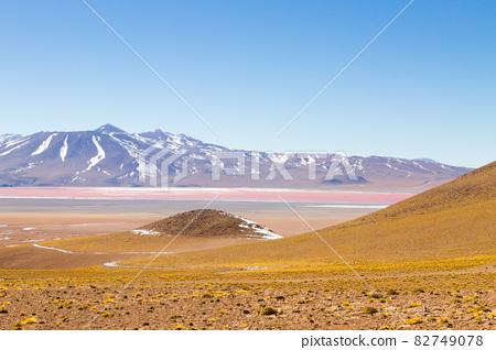 Laguna Colorada view, Bolivia 82749078