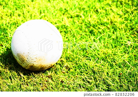Softball placed on the lawn 82832206