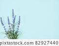 藍色背景複製空間植物 82927440