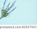 藍色背景複製空間植物 82927441