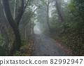 Misty mountains 82992947