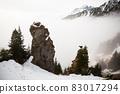 Tatra chamois climbing on mountains in winter mist 83017294