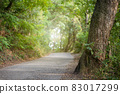 Asphalt way in forest with sunlight in background. 83017299