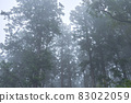 Misty mountains 83022059