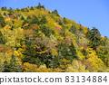 Autumn leaves of Asari Pass in Hokkaido 83134884