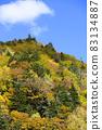 Autumn leaves of Asari Pass in Hokkaido 83134887