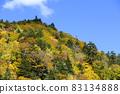 Autumn leaves of Asari Pass in Hokkaido 83134888