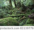야쿠시마의 숲 83139776